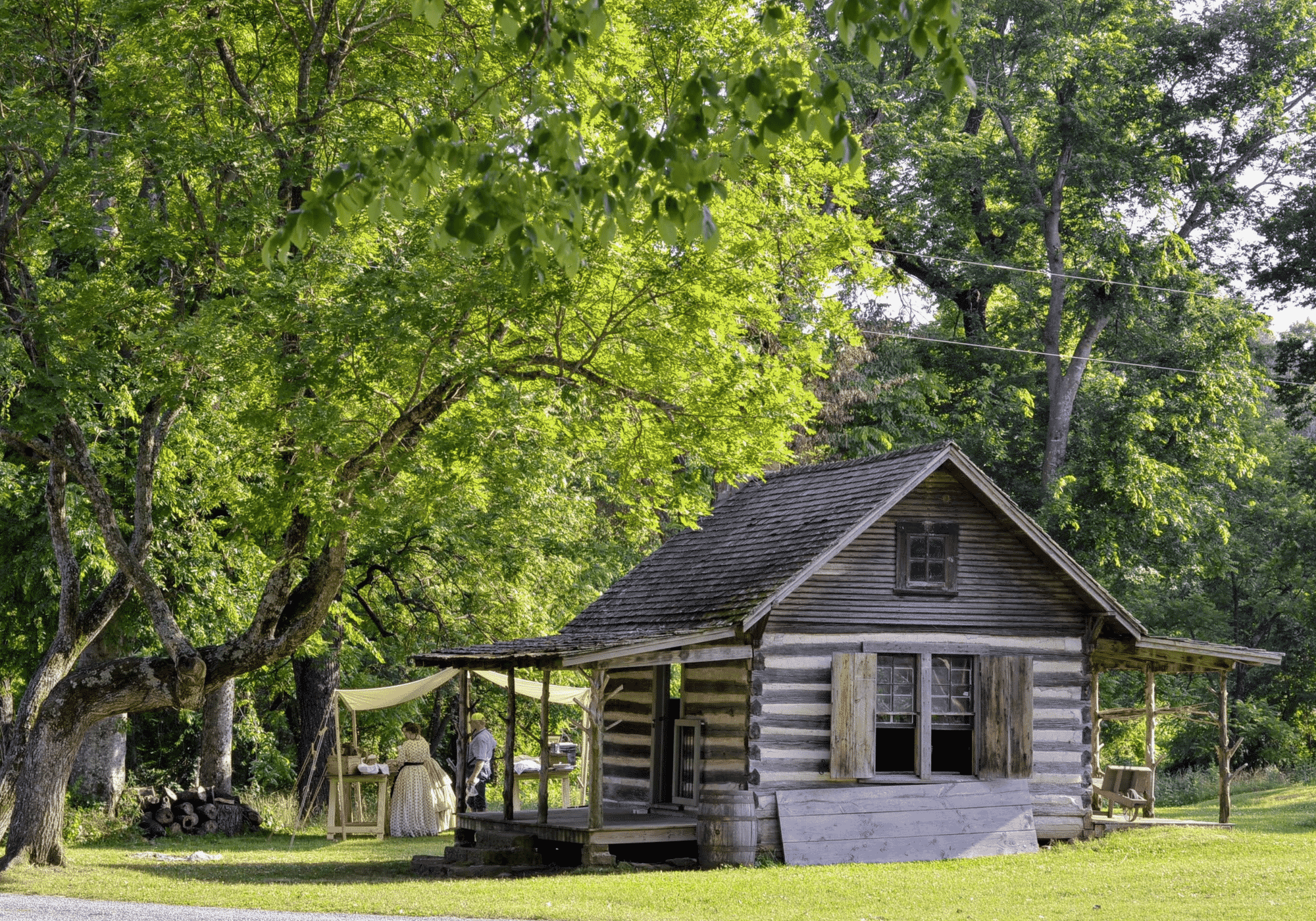 A historic log cabin shown next to a large, leafy tree.