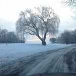 My commute into work- Edsel and Eleanor Ford House in Grosse Pointe Shores, MI