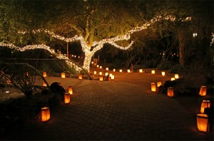 Ok, so it's not the Chandler Museum, but this photo of the luminarias at the Desert Botanical Garden is beautiful!  Photo credit to the John Wise blog