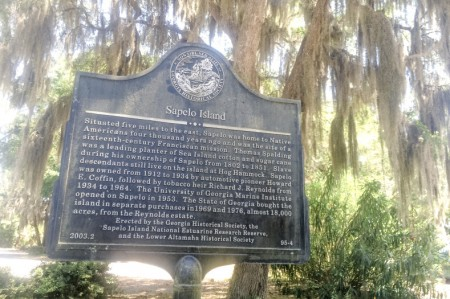 Sapelo Island historical marker near the Meridian dock. Courtesy of Dylan Wilson.